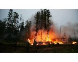 Інформація щодо попередження виникнення пожеж