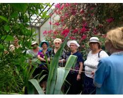 «путешествие» по Ботаническому саду