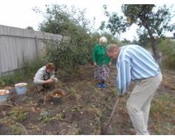 Осінь гаряча пора,потрібно встигнути зібрати врожай, обробити присадибні ділянки, розпиляти та поколоти дрова, провести роботи з утеплення осель на зиму.