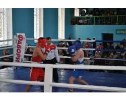 Третій відкритий Всеукраїнський турнір з боксу