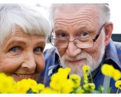 З Днем людей похилого віку та Днем ветерана!