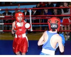 XIII відкритий міський турнір з боксу